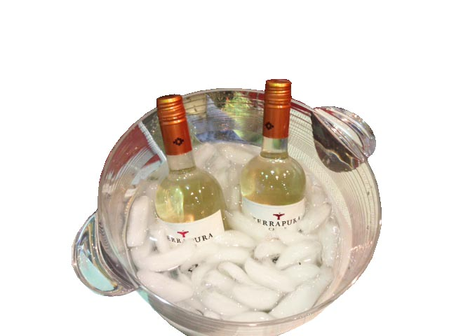 Chile Wine Bottle in Ice Buck